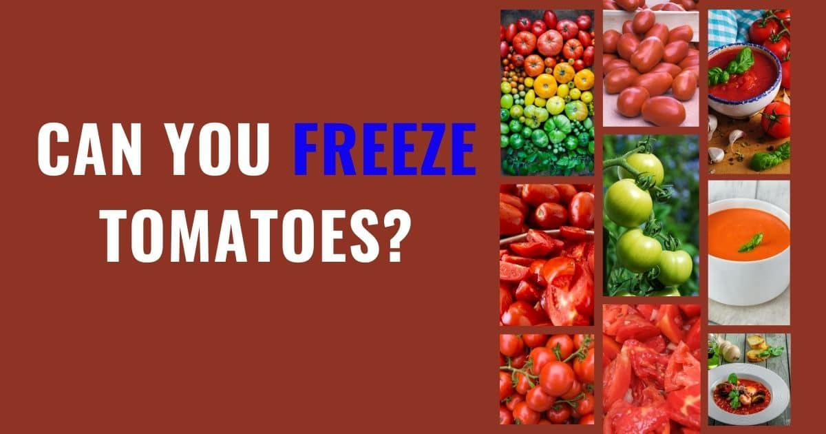 "A banner with the words ""can you freeze tomatoes"", and a variety of pictures showing that whole and sliced tomatoes can be frozen; as well as any variety of tomatoes."