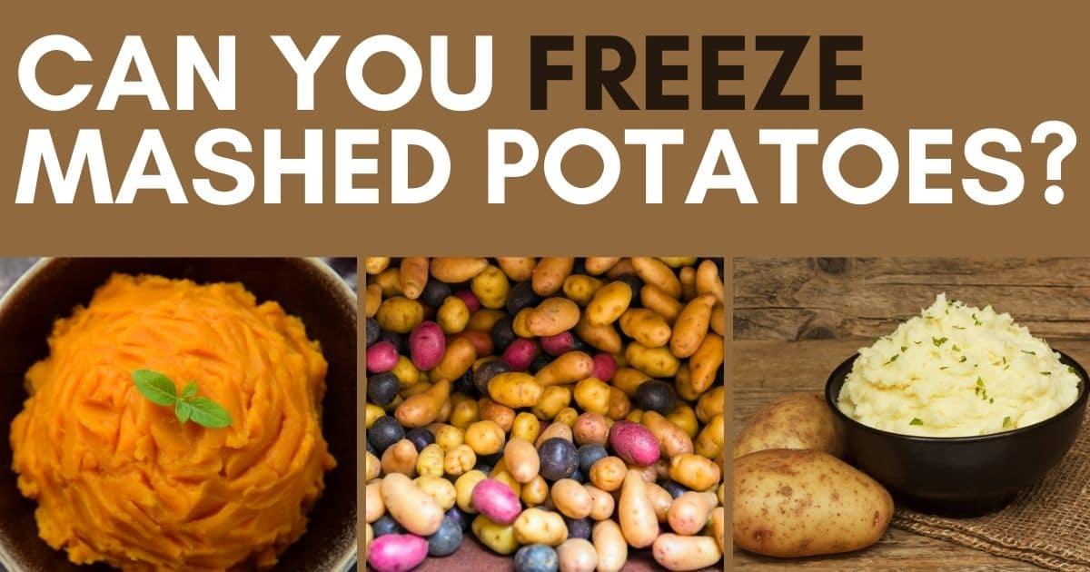 Can You Freeze Mashed Potatoes