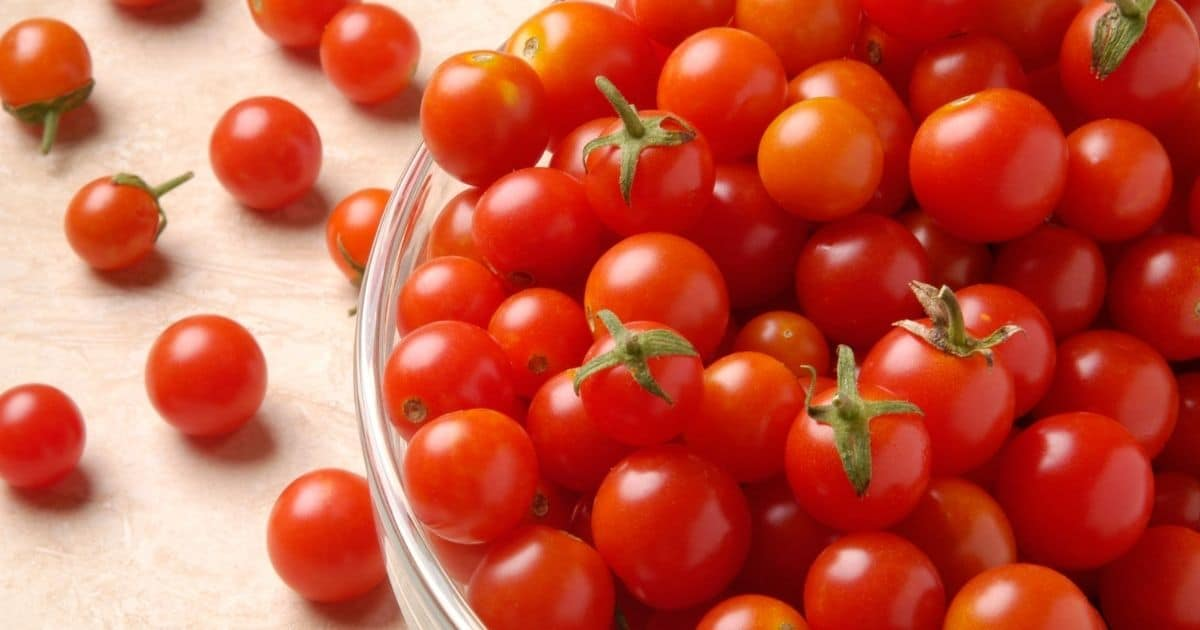 A picture of cherry tomatoes