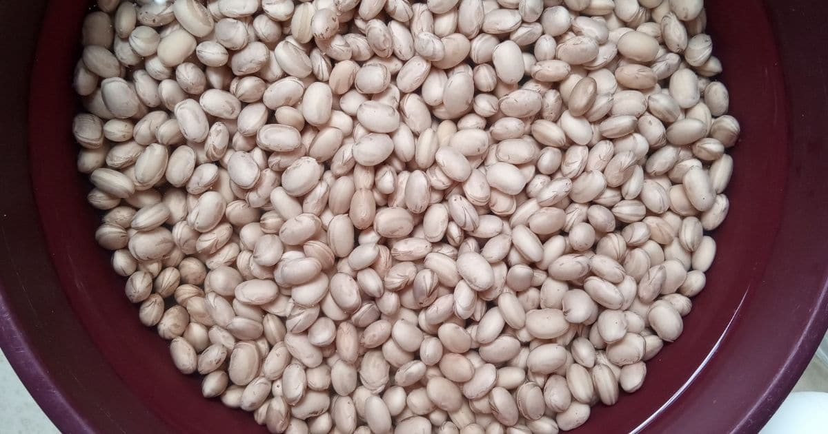 Freeze Pinto Beans