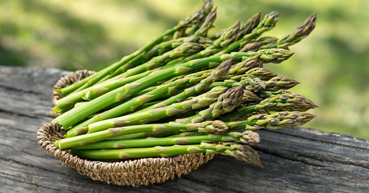 Small, firm and fresh asparagus on a basket