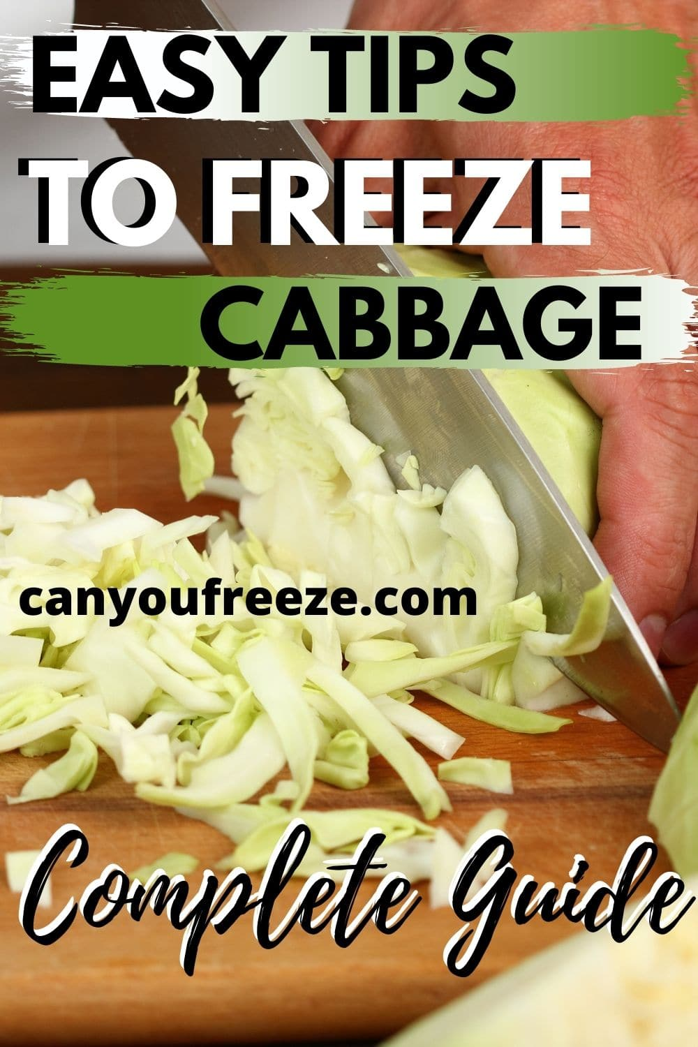 Cabbage Pin4
