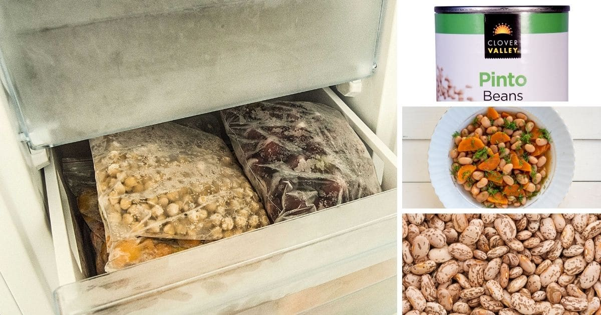 Can you freeze pinto Beans FB