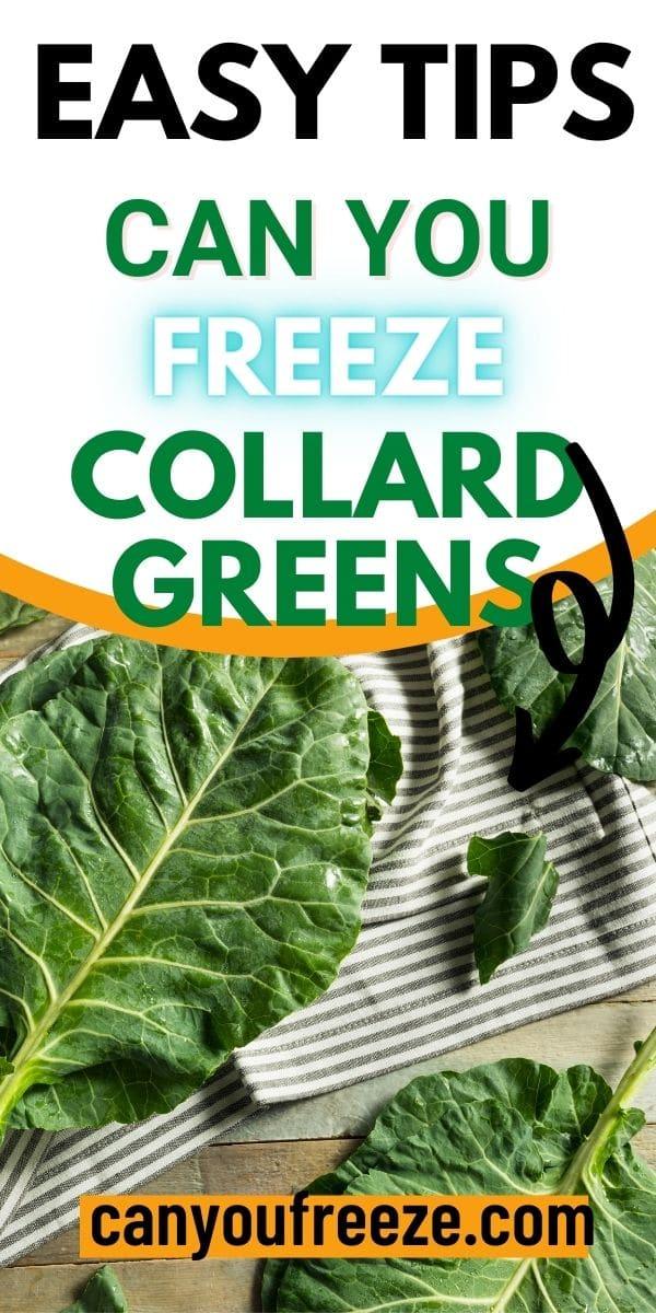Collard Greens pin_4