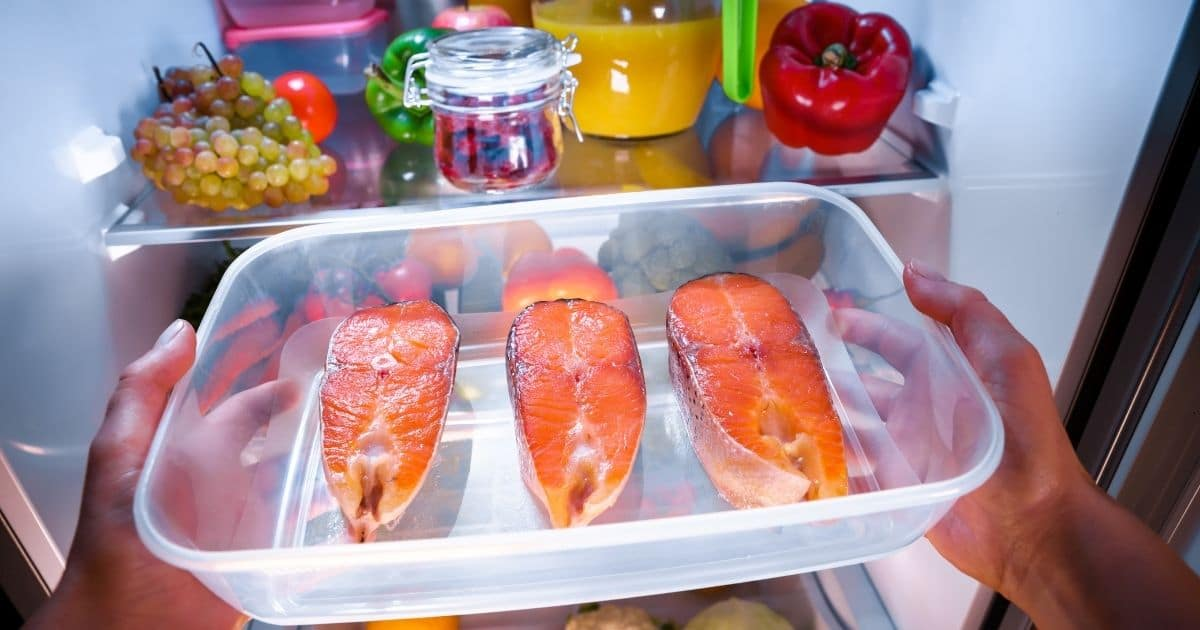 Salmon fillets being placed in the freezer