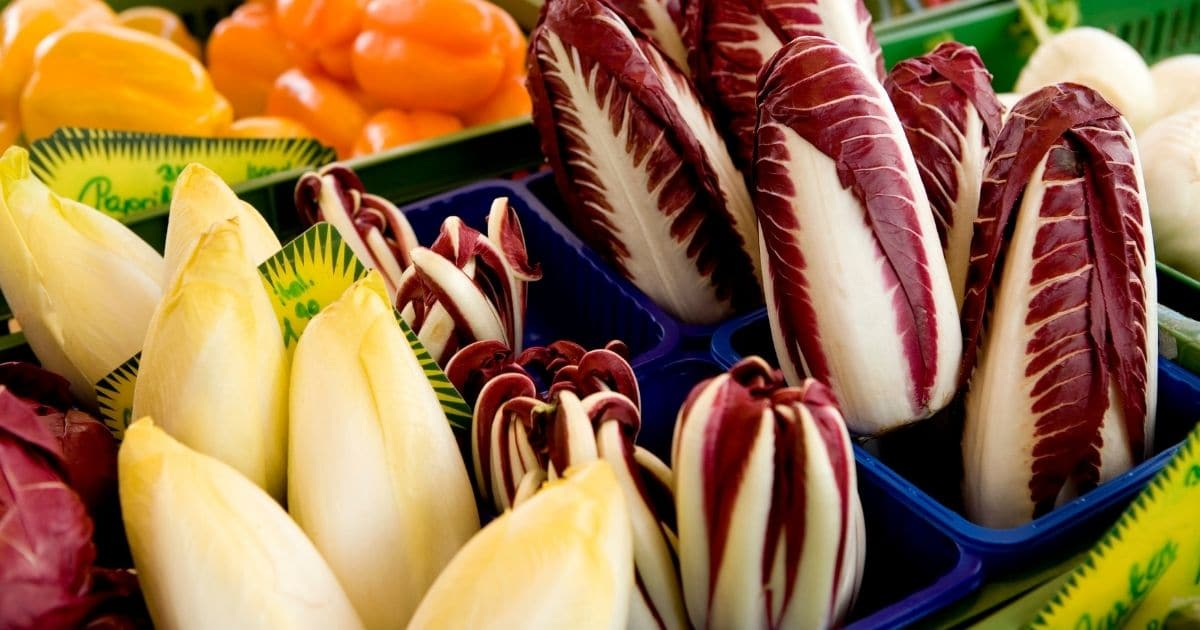 A picture of Endives'