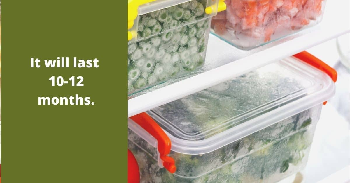 Green onions amongst other vegetables inside airtight containers inside the freezer
