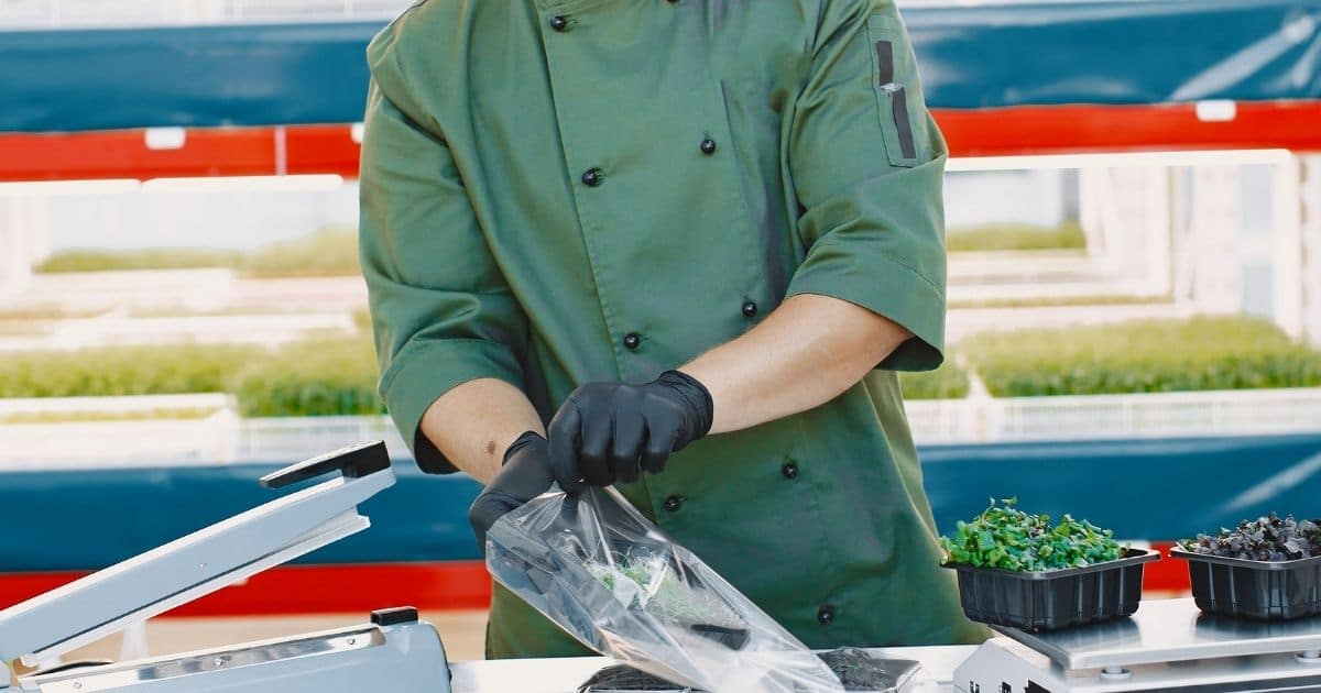 vacuum sealing lettuce