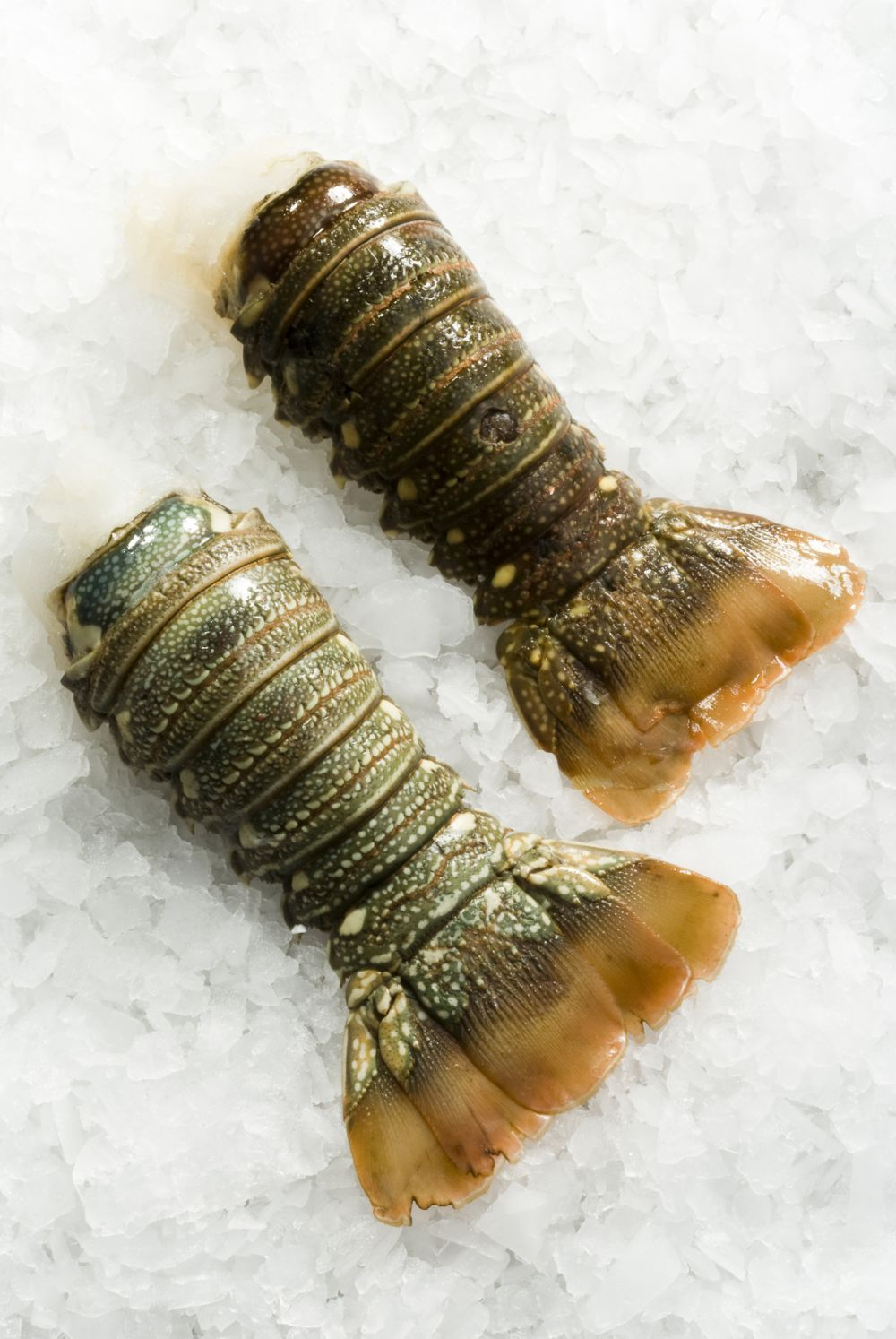 How to freeze lobster tails