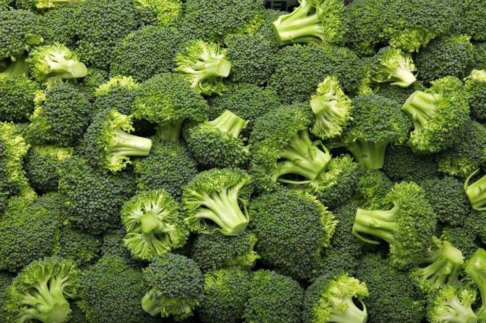 Plant broccoli