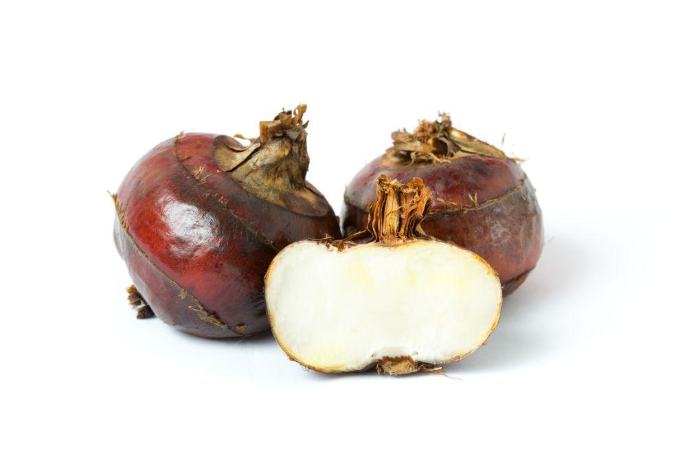 Water chestnut (2)