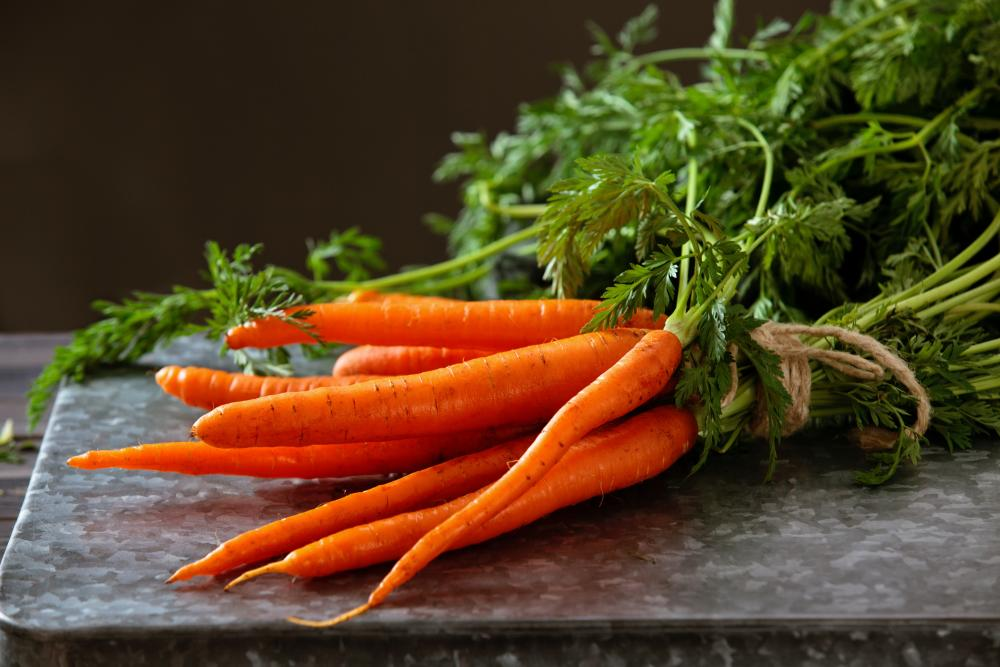 Carrot growing problems (1)