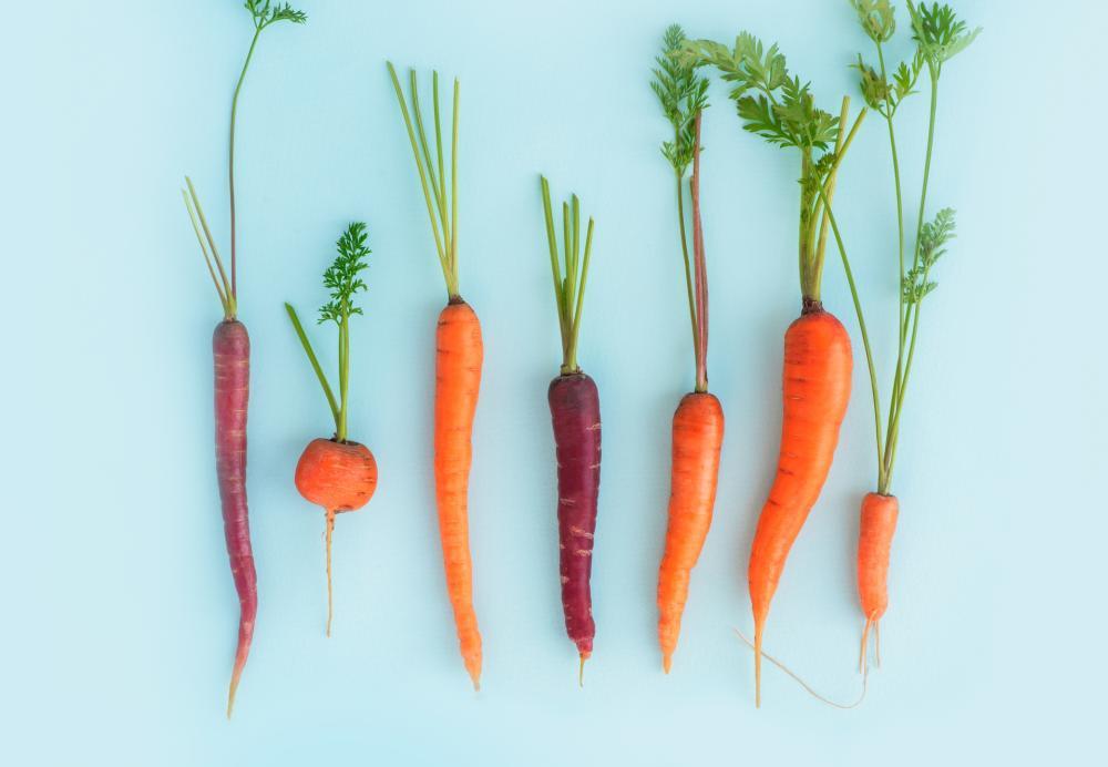 Carrot types (1)
