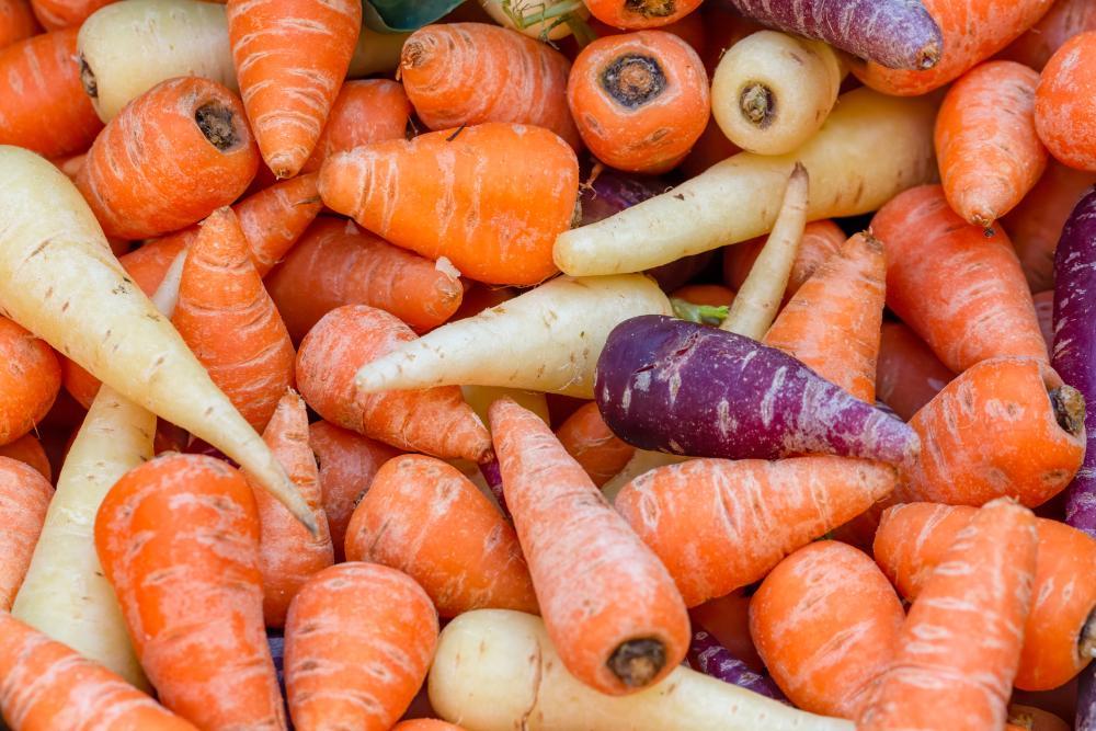 Carrot types (2)