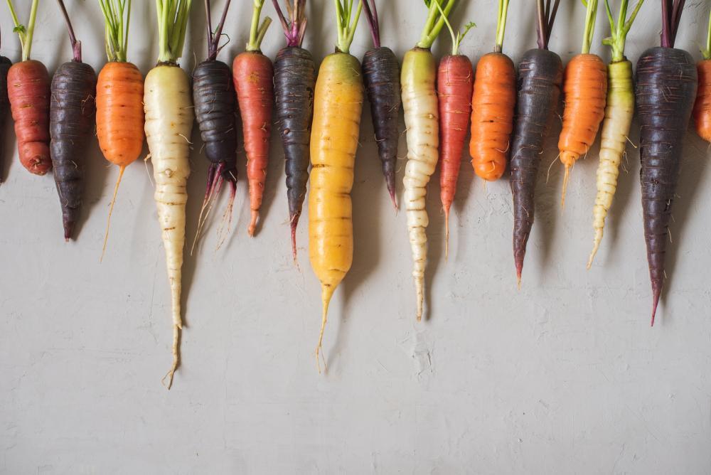 Carrot types (4)