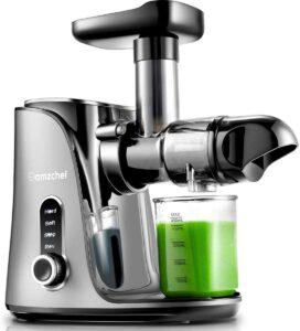 Amzchef gm3001 slow masticating juicer