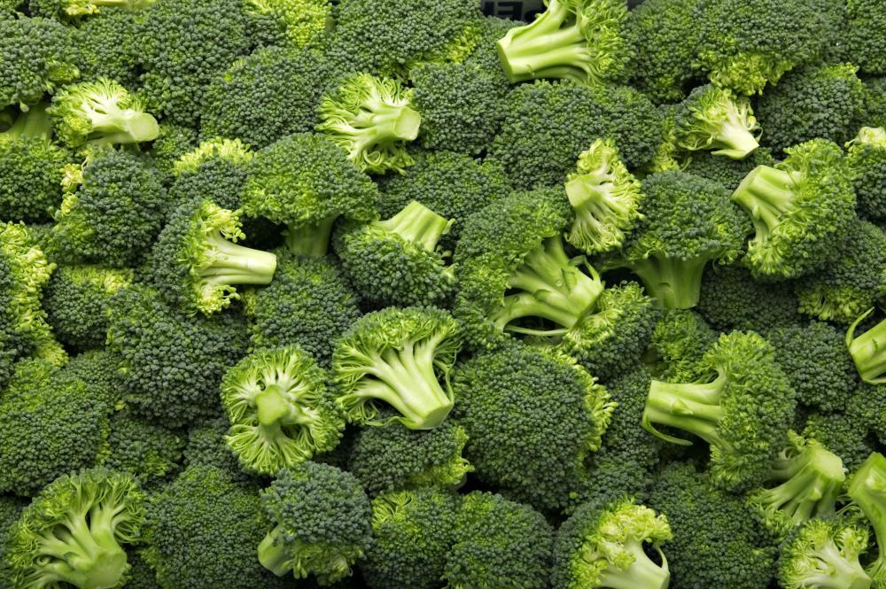 Broccoli problems (3)