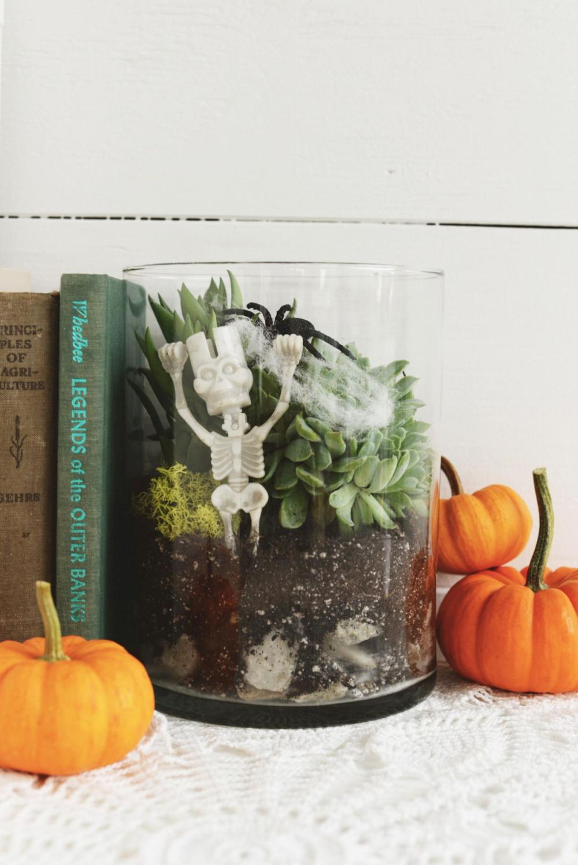 Diy halloween decor diy spooky halloween terrarium