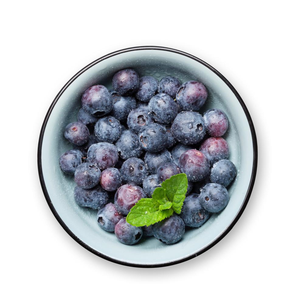 Blueberry varieties bluecrop