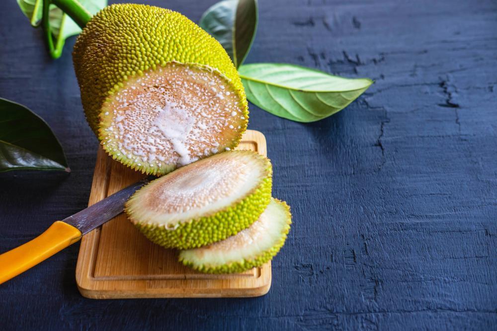 Breadfruit grow harvest