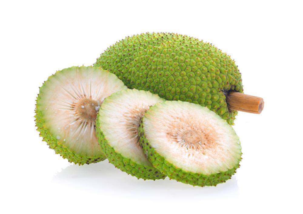 Breadfruit varieties
