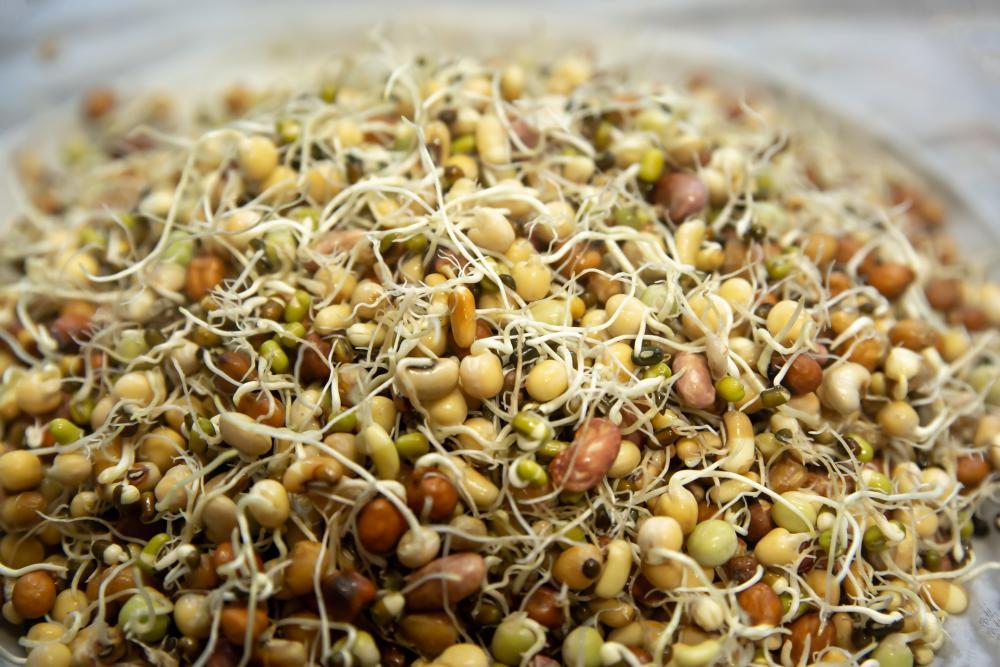 Soak seeds before planting